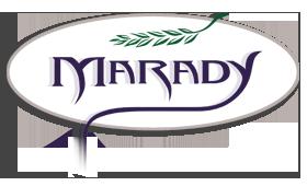 Marady